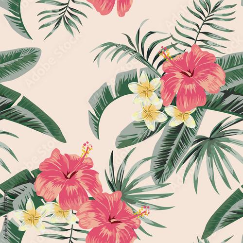 tropikalne-rosliny