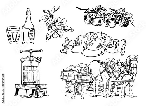 Foto Cartoon illustration of apple branches, flowers, press for squeezing, horse cart, bottle with glass, label