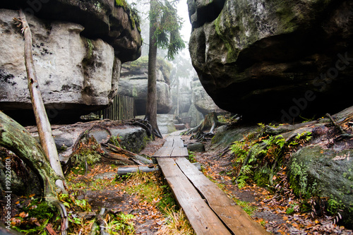 Fotografie, Obraz Góry Stołowe trasa