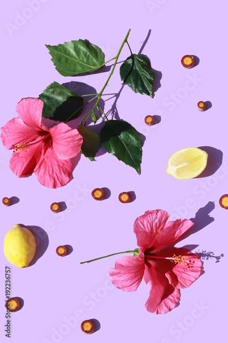 Staande foto Bloemen Hibiscus Fun