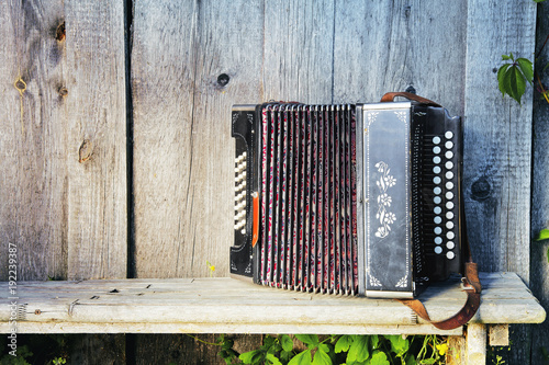 Fotomural Old lonely accordion on the bench in summer sunny weather