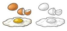Fried Egg And Broken Shell. Vintage Color Engraving Illustration
