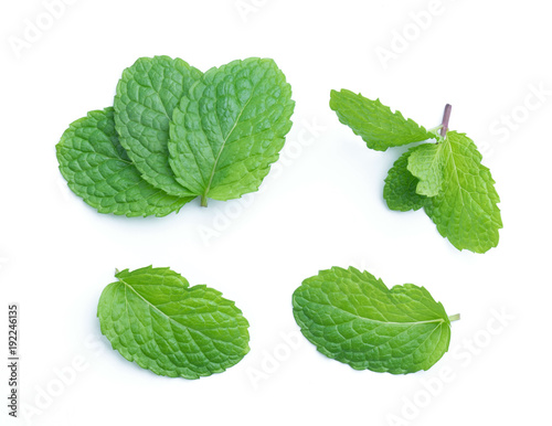 Canvas Prints Condiments fresh raw mint leaves isolated on white
