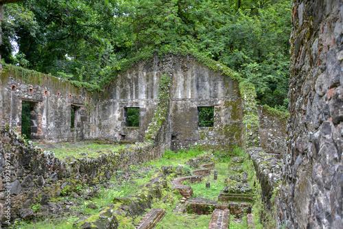 Ruines de La Pagerie Poster