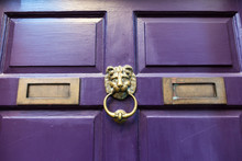 A Lion Head Shaped Door Knocker On A Purple Door.
