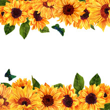 Watercolor Yellow Sunflowers O...