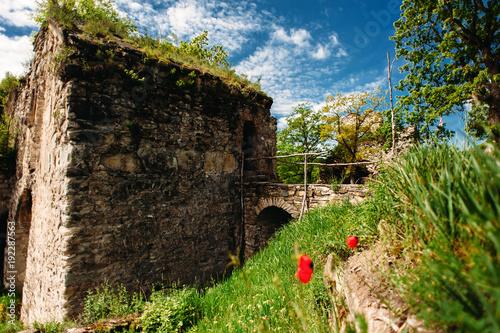 Plakat Twierdza Ujarma, Kakheti, Gruzja. Ruiny starego zamku z starożytny most z kostki brukowej.