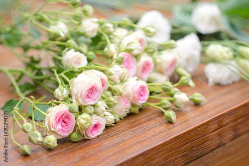 Fototapeta Cut roses on bench