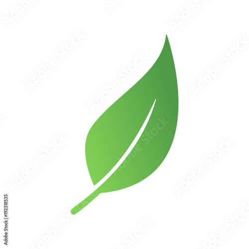 Zielony liść eko - fototapety na wymiar