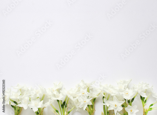 Cadres-photo bureau Narcisse Styled stock photo. Spring, Easter feminine desktop scene with pink plate, narcissus, daffodils flowers and white table. Floral composition, web banner. Top view. Picture for blog or social media.