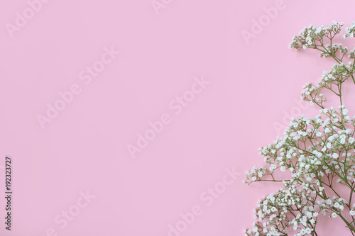 Styled stock photo feminine wedding birthday desktop mockup with feminine wedding birthday desktop mockup with babys breath gypsophila flowers mightylinksfo