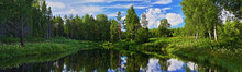 Panorama Of Forest Lake