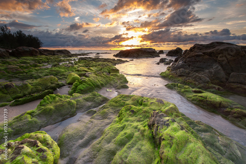 Poster Heuvel Long expose seascape with rocks covered by green moss and waves trails. soft focus due to slow shutter.