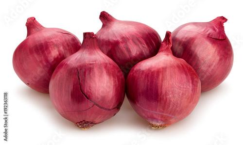 Cuadros en Lienzo  red onions