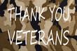 Thank You Veterans Concept