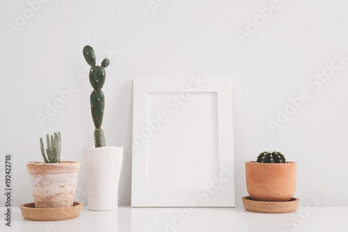 Papiers peints Cactus succulents or cactus in clay pots over white background on the shelf and mock up frame photo.