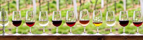 Foto auf Gartenposter Wein Glasses with wine. Red, pink, white wine in glasses.