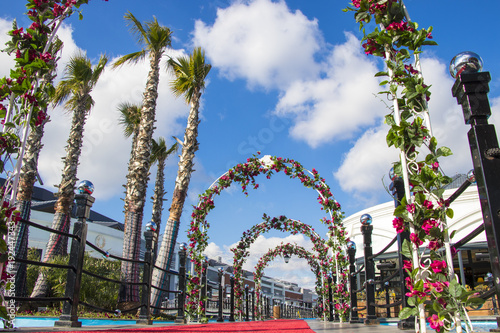 Photo Stands Vienna beautiful travel or wedding landscape with flowers and palm tree blue cloudy sky