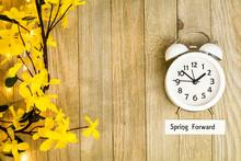 Daylight Savings Time Spring F...