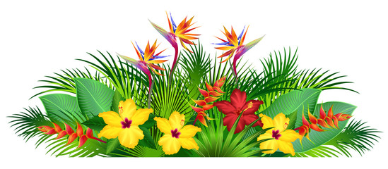 NaklejkaTropical flowers with palm leaves (strelitzia, hibiscus, heliconia). Hand drawn vector illustration on white background.