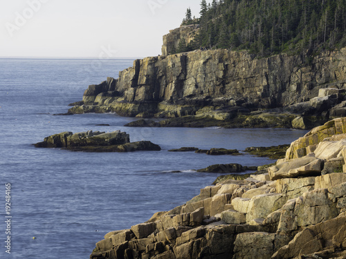 Coastal Vista - Otter Point, Acadia National Park Wallpaper Mural