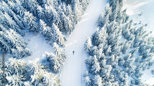 Fotobehang Weg in bos aerial view of forest covered with snow ,bird's eye view