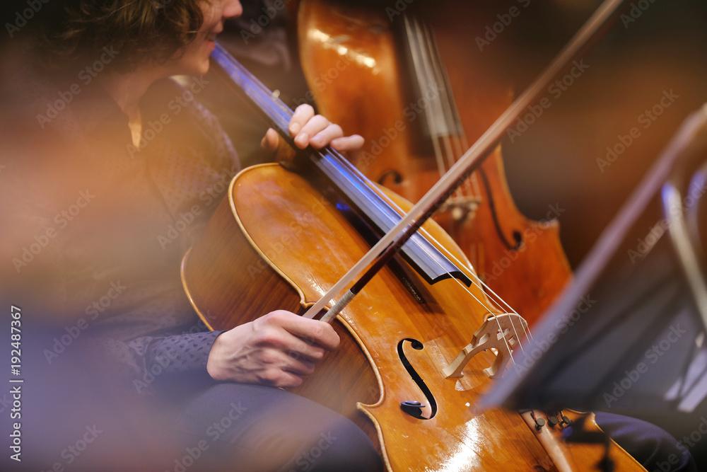 Fototapeta violoncelle instrument musique classique archet lutherie luthier