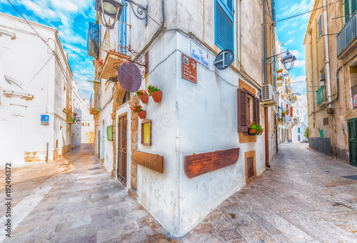 Buildings and street in old town Monopoli, Puglia, Italy Canvas Print