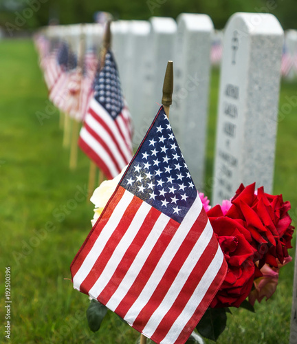 American flags and  tombstones at an American National Cemetery. Wallpaper Mural