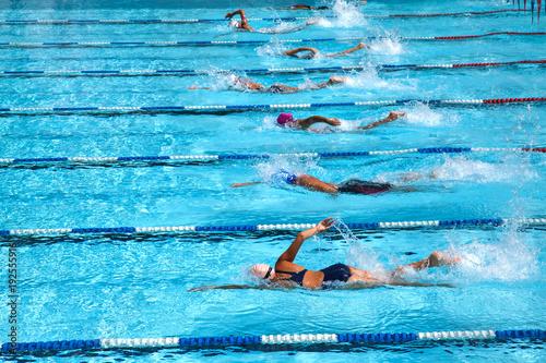 Obraz Swimming in the pool. - fototapety do salonu