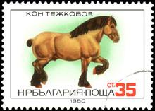 BULGARIA - CIRCA 1980: A Stamp, Printed In Bulgaria, Shows A Heavy Horse