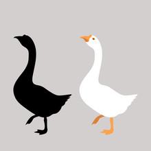 Goose  Vector Illustration Fla...