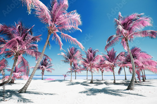 Valokuvatapetti Palm trees on idyllic paradise beach in infrared colors