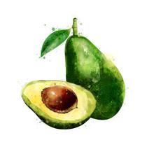 Avocado On White Background. W...