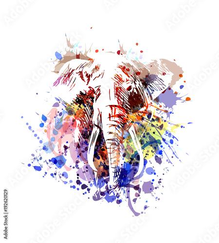 pelen-kolorow-zarys-glowy-slonia
