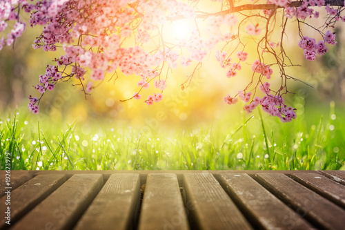 Spring flowers and wooden deck in morning sunlight background