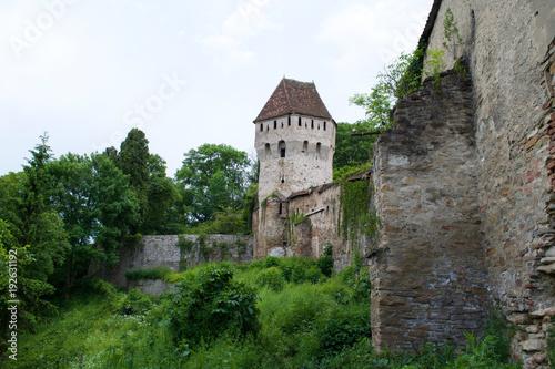 Fotografie, Obraz  Tower and walls of the Sighisoara Citadel in Transylvania, Romania