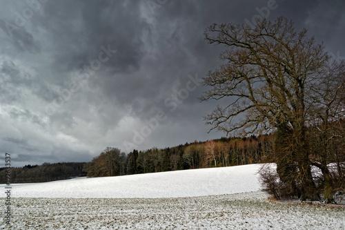 Landschaft im Winter mit beginnendem Schneefall, eine Wiese mit einem Wald im Hintergrund © si2016ab