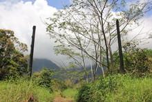 Am Gate Von Jurassic Park Kauai Hawaii USA