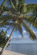 Rarotonga Cook Islands Pacific.
