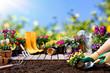 Leinwandbild Motiv Gardening - Gardener Planting Pansy With With Flowerpots And Tools
