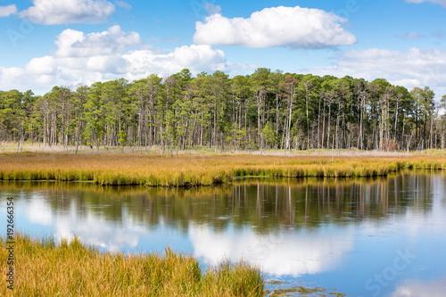 Photo Blackwater National Wildlife Refuge in Dorchester County, Maryland