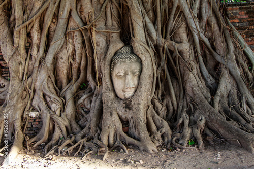 Photo Stands Place of worship ROOTS