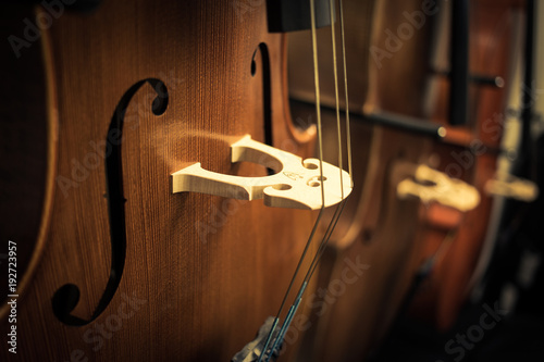 Detail on violoncello, the musical instrument #192723957