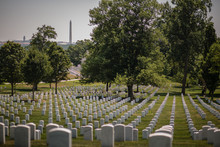 Arlington Cemetery On A Hot Su...