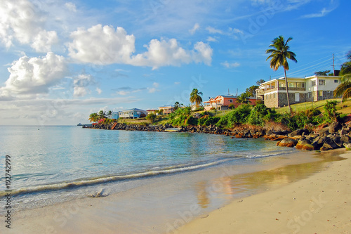 View of Grand Anse beach on Grenada Island, Caribbean region of Lesser Antilles Wallpaper Mural