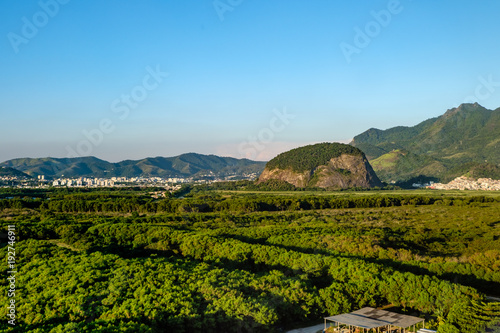 Foto op Aluminium Blauw Forest landscape with hill in the background, near Vila Panamericana, Barra da Tijuca, Rio de Janeiro