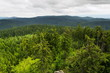 Beautiful summer forest view from Pajndl lookout tower cloudy sky copy space, Tisovsky Mount in Krusne Hory, Bohemia, Czech Republic