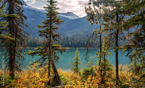 Foto op Canvas Bomen Autumn Hiking around Emerald Lake in Yoho National Park