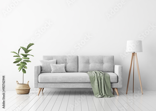 Fotografía  Living room interior with gray velvet sofa, pillows, green plaid, lamp and fiddle leaf tree in wicker basket on white wall background